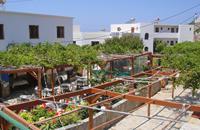 Hotel Krinos (logies) - inclusief huurauto
