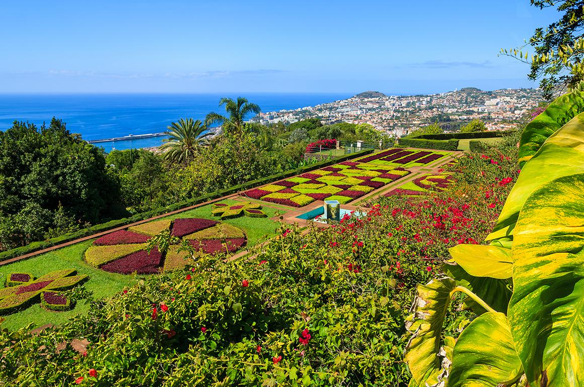 Fly & Drive Madeira Charms of Madeira - Inclusief huurauto