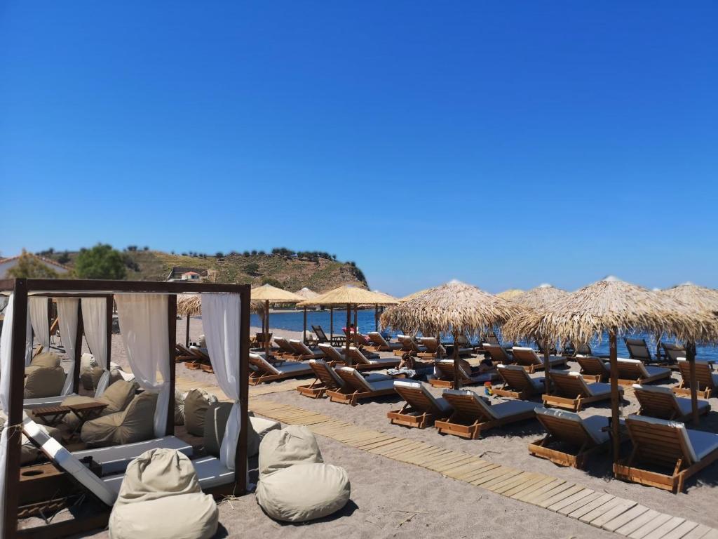 The Coast Seaside Rooms